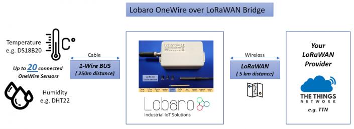 DS18B20 LoRa Temperatur Sensor